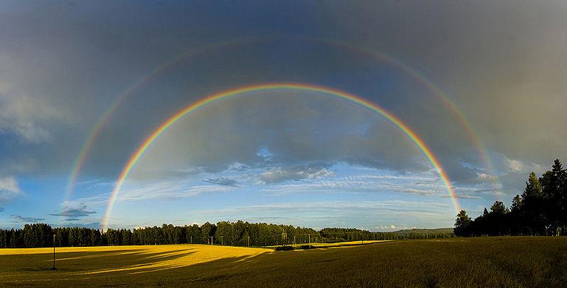 Afbeeldingsresultaat voor regenboog
